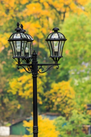 lantern in a city park close-up on a background of autumn leaves Stock Photo