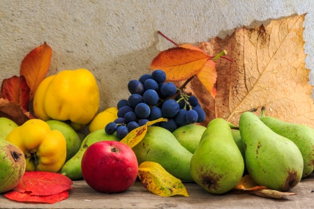 autumnal fruit still life with apples, pears, quince, grapes and leaves on wooden base photo