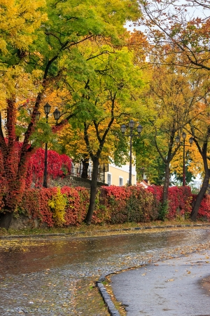 urban landscape. street of the old town is wet after rain, with yellowed trees, red ivy on the wall and street lamps Stock Photo
