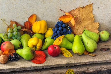 autumnal fruit still life with apples, pears, quince, grapes nuts and leaves on wooden base photo
