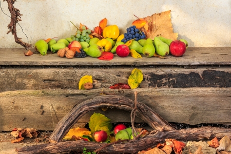 autumnal fruit still life with apples, pears, grapes, nuts and berries in foliage  on board and vines background