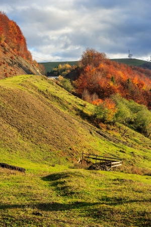 autumn mountain landscape. hillside with pine and Colorful foliage aspen trees near green valley
