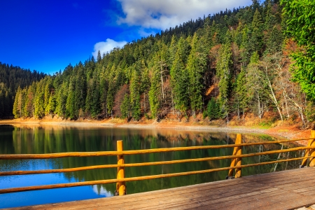 fence on the Lake in mountain near coniferous forest Stock Photo - 23180997