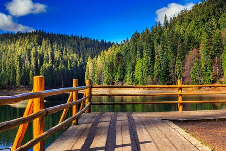 pier on the Lake in mountain near coniferous forest Stock Photo - 23180998