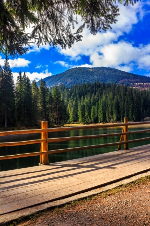 fence on the Lake in mountain near coniferous forest Stock Photo - 23181000