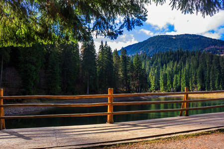 fence on the Lake in mountain near coniferous forest