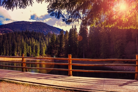 fence on the Lake in mountain near coniferous forest Stock Photo - 23181003