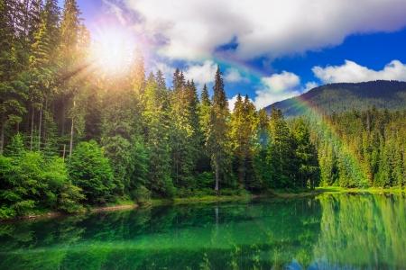 山背景に早朝に松の森の近くに湖を見る