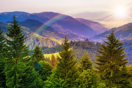 mountain landscape pine trees near valley and colorful forest on hillside under blue sky with clouds and rainbow Stock Photo - 23577413