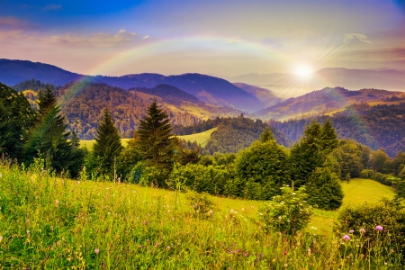 mountain landscape pine trees near valley and colorful forest on hillside under blue sky with clouds and rainbow
