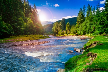 river near  forest at the foot of mountain Stock Photo - 23988237