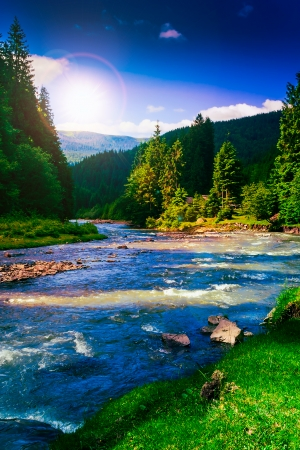 river near embankment with trees at the mountain foot in evening Stock Photo