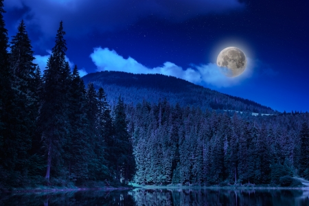 pine forest and lake near the mountain early at night Stock Photo
