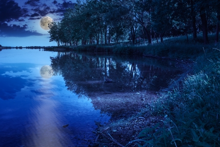 Mountain lake and forest on the embankment at night photo