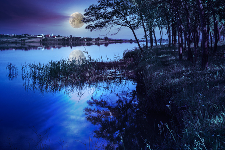 Mountain lake and forest on the embankment at night