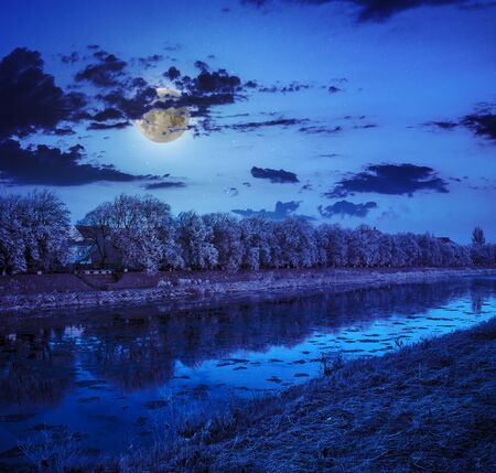 bank of the river with trees covered with rime on in moon light a winter night