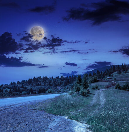 Empty asphalt mountain road with Painted single white Line near the coniferous forest with cloudy sky at night