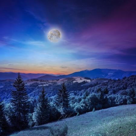 日没後の雨の後の急な山の斜面上の森の近くの谷