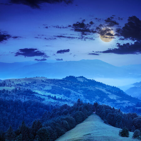 mountain steep slope with coniferous forest in moon light mist Stock Photo
