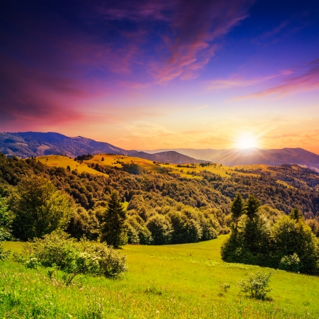 mountain steep slope with coniferous forest in evening photo