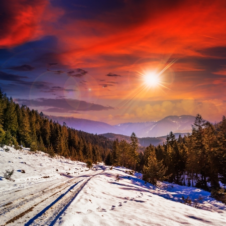 winter evening mountain landscape. winding road that leads into the pine forest covered with snow.