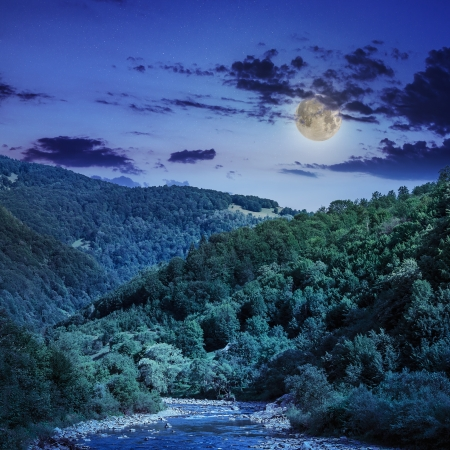 wild river flowing between green mountains in moon light