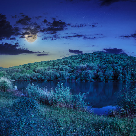 view on lake near the pine forest on mountain background  in moon light photo