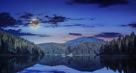 view on lake near the pine forest at night on mountain background photo