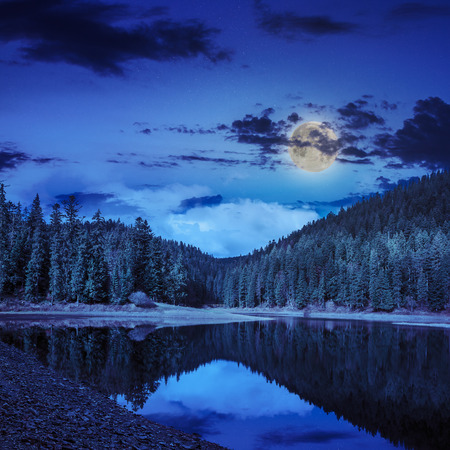 view on lake near the pine forest late midnight on mountain background in moon light