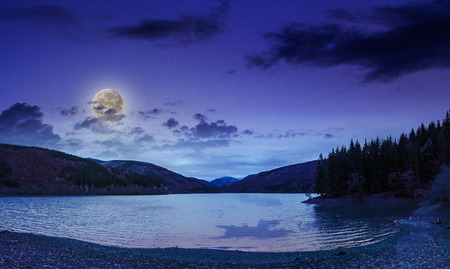 view on lake near the pine forest late at night on mountain background in moon light photo