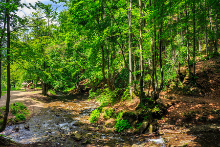 mountain river with stones and moss in the forest near the mountain slope