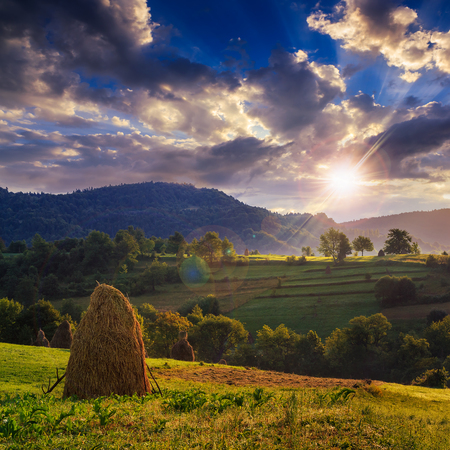 Stack of hay on a green meadow in the mountains in the morning under a blue summer sky at sunset photo