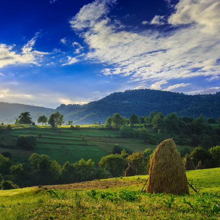 Stack of hay on a green meadow in the mountains in the morning under a blue summer sky photo