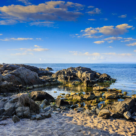 sea coast with boulders sand and seaweed in the morning