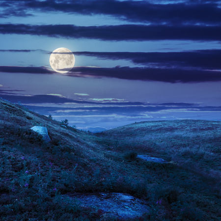 mountain landscape. valley with stones on the hillside. forest on the mountain. at night in moon light