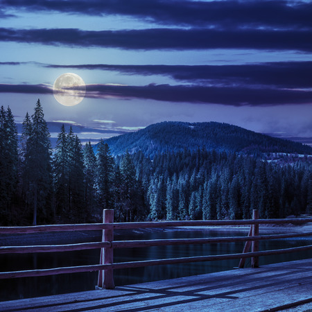 view from pier on lake near the pine forest on mountain background at night in moon light