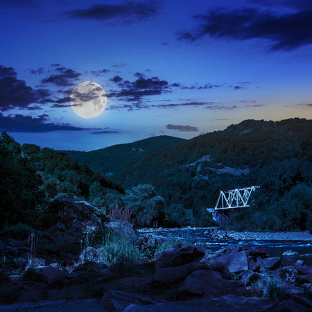 mountain river with stones and grass in the forest at the foon of mountain slope at night in moon light