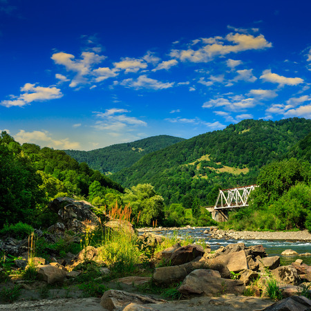 mountain river with stones and grass in the forest at the foon of mountain slope at sunrise Stock Photo