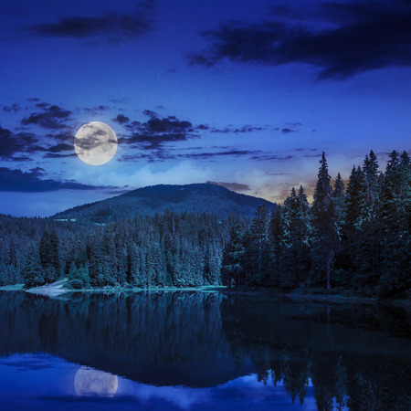 view on lake near the pine forest  on mountain background at night in moon light