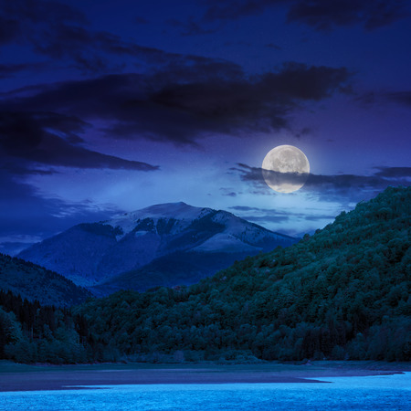 view on lake shore near the forest on mountain background at night in moon light photo