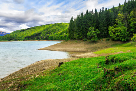 view on lake near the pine forest on mountain background Stock Photo - 28244076