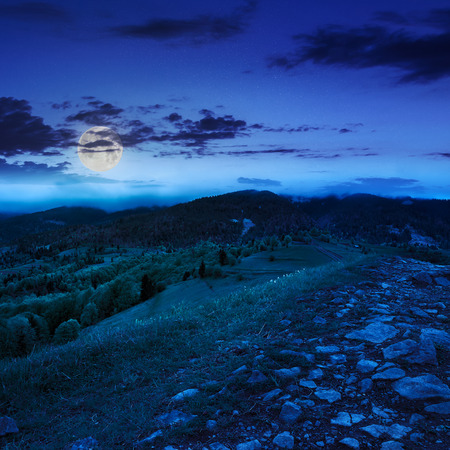 summer landscape. path  on top of the meadow on the hillside. forest in fog on the mountain at night in moon light