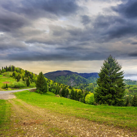 asphalt road going down the hill and up in to mountains, passes through the green shaded forest in bad rainy weather Stock Photo