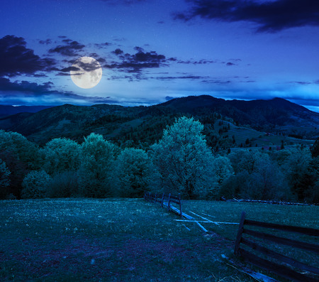 autumn landscape. fence near the meadow path on the hillside. forest in fog on the mountain at night in moon light
