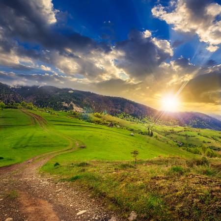 夏の風景。丘の中腹の草原上のパス。山の霧の森。夕暮れ時