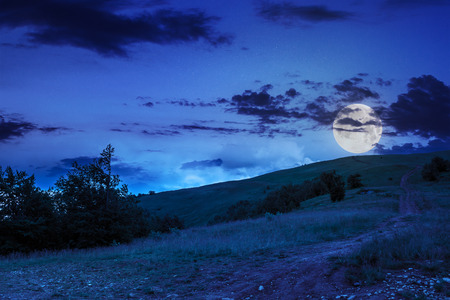 summer landscape. meadow path on the mountain hillside at night in moon light Stock Photo