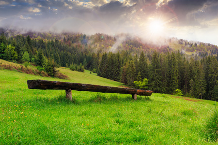 wooden bench out of wood on the meadow in front of coniferous forest on the hillside in the fog