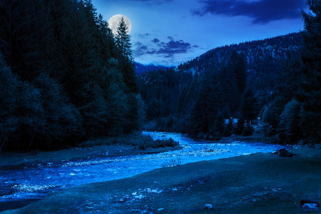 camping place on rocky shore of mountain river near the forest at night in moon light