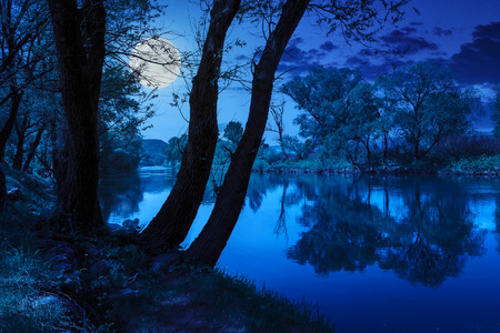 mountain river with stones and grass in the forest near the mountain at night in moon light