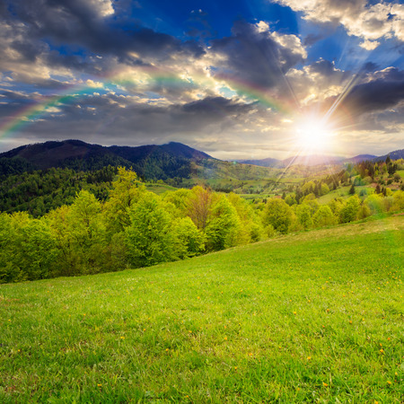 summer landscape. rainbow ower the green grass on  hillside meadow. forest in fog on the mountain at sunset